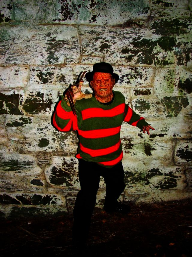 Freddy.jpg